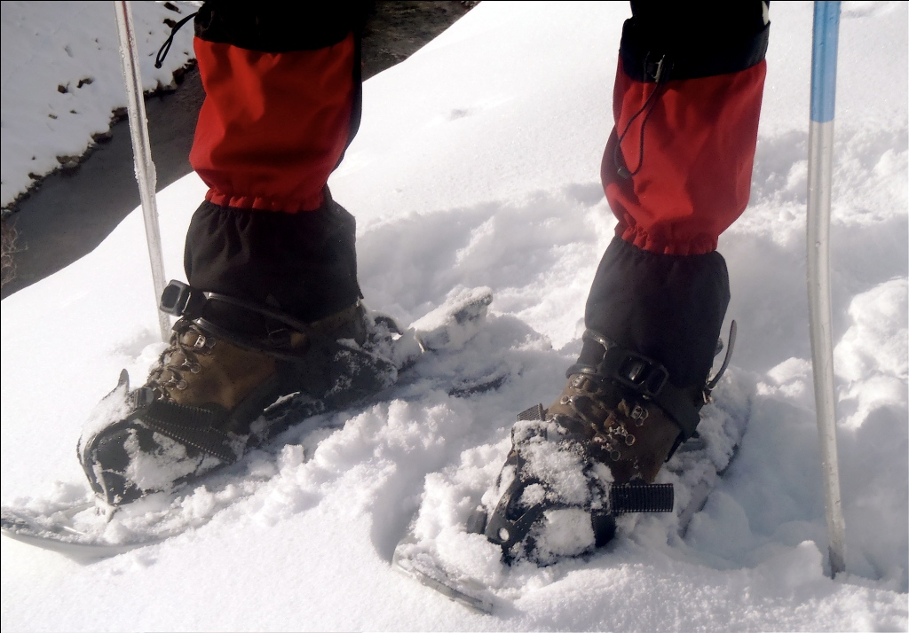 A Romantic Snowshoe for Beginners