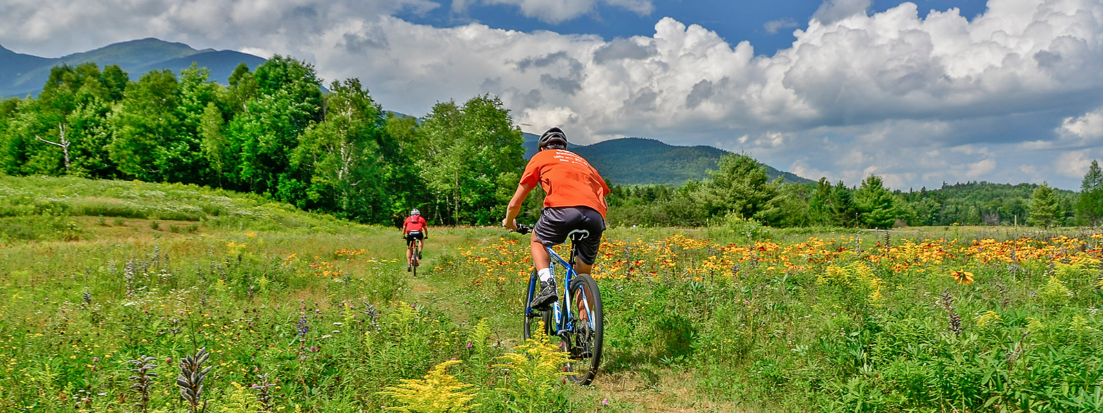 A Beginners Guided Mountain Biking Excursion in the White Mountains