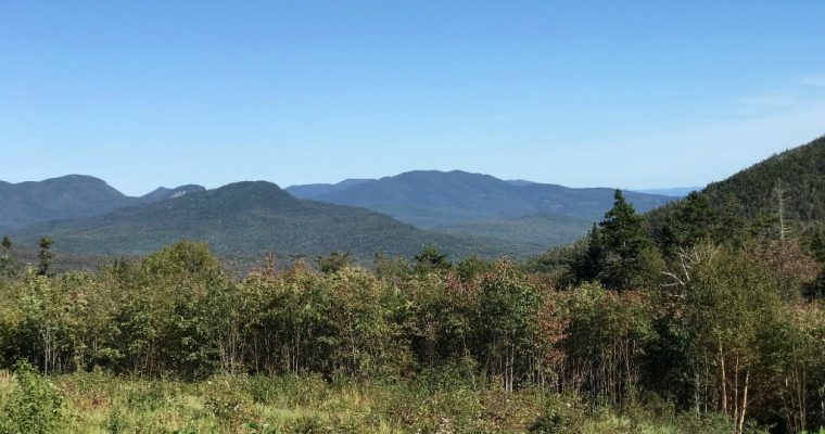White Mountain Guided Hike for Beginners