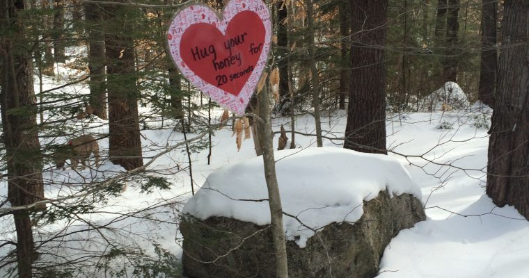 A Snowvillage Guide to Romance