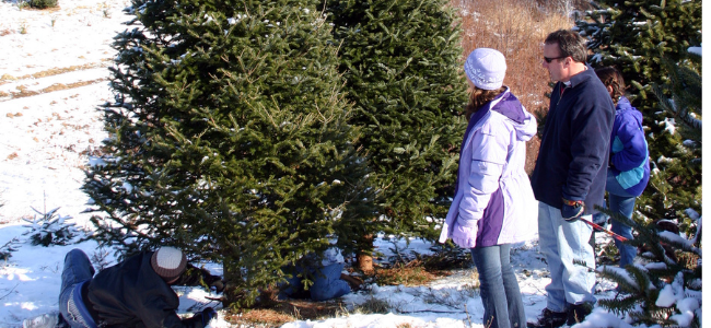 5 Simple Ways To Celebrate The Holidays